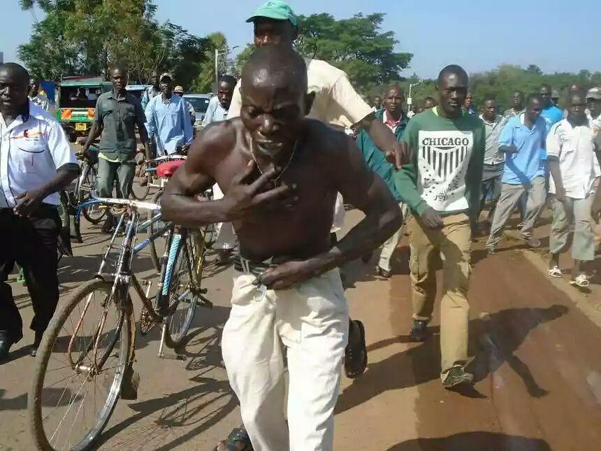 Mwizi wa Gari Ashambuliwa na Nyuki, Ajisalimisha Polisi