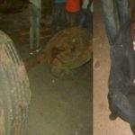Ajali ya Basi, Lori na Trekta Yaua Kwimba, Mwanza